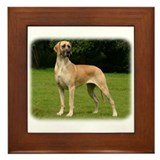 Great Dane 9Y225D-052 Framed Tile