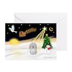 Night Flight/Coton #1 Greeting Cards (Pk of 10)