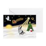 Night Flight/Corgi (BM) Greeting Cards (Pk of 10)