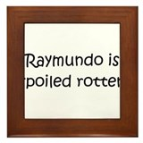 Cool Raymundo Framed Tile