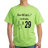 Cute Happy 29th birthday T-Shirt