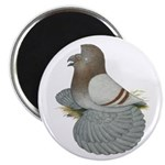 "English Trumpeter Mealy 2.25"" Magnet (10 pack"