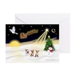Night Flight/Chihuahua Greeting Cards (Pk of 10)