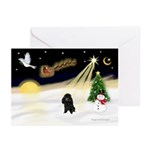 Night Flight/Poodle (Min) Greeting Cards (Pk of 20