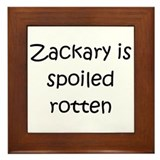 Cool Zackary Framed Tile