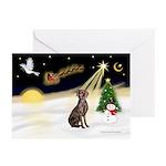 Night Flight/Weimaraner Greeting Cards (Pk of 20)