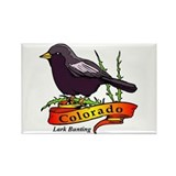 Colorado Pride! Rectangle Magnet