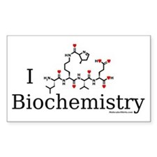 I love Biochemistry Rectangle Decal