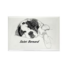 Cute Saint bernard Rectangle Magnet