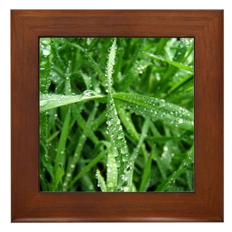 Raindrops on Grass Framed Tile