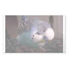 Sky Blue Parakeet Decal