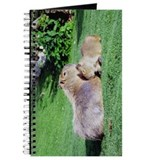 Capybara Snooze Journal