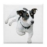 Jack Russel Dog Tile Coaster