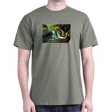 Buckeye Creek Falls T-Shirt