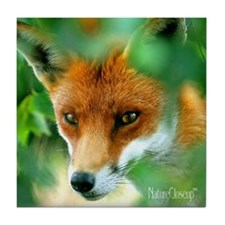 RED FOX Tile Coaster