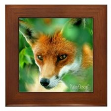RED FOX Framed Tile