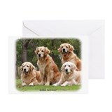 Golden Retriever 9Y180D-149 Greeting Cards (Pk of
