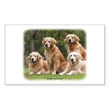 Golden Retriever 9Y180D-149 Decal