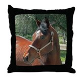 Quarter Horse Throw Pillow