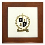 MIUS d'ENTREMONT Family Crest Framed Tile
