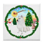 Take Off1/Am Eskimo #5 Tile Coaster