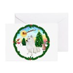 Take Off1/Am Eskimo #5 Greeting Cards (Pk of 10)