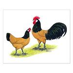 Gold Lakenvelder Chickens Small Poster