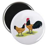 "Gold Lakenvelder Chickens 2.25"" Magnet (100 p"
