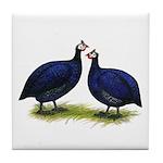 Royal Purple Guineas Tile Coaster