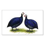 Royal Purple Guineas Rectangle Sticker 50 pk)
