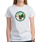 Take Off1/Lab (choc) Women's T-Shirt