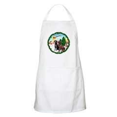 Take Off1/2 Labs(cho/blk) BBQ Apron