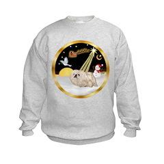 Night Flight/Pekingese Kids Sweatshirt