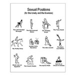 sexual positions poster