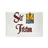 Sir Triston Rectangle Magnet (10 pack)