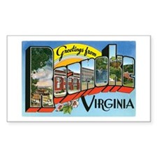 Roanoke VA Rectangle Sticker 50 pk)