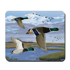 Mallard ducks Mousepad