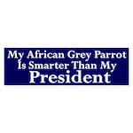 My African Grey Is Smarter Than Dubya