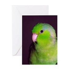 Puck Greeting Card