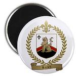 RICARD Family Crest Magnet