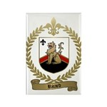RICARD Family Crest Rectangle Magnet (10 pack)