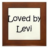 Unique Levi Framed Tile