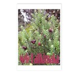 Mele Kalikimaka Postcards (Package of 8)