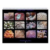 Corals I Wall Calendar