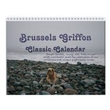 NEW! Brussels Griffon Classic 2013 Wall Calendar