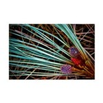 Lake Tahoe Photoart Mini Poster Print