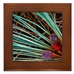 Lake Tahoe Photoart Framed Tile