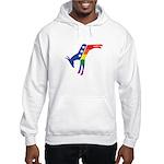 Gay Pride Dem Donkeys Hooded Sweatshirt