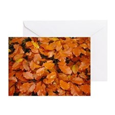 Autumn Leaves Greeting Cards (Pk of 10)