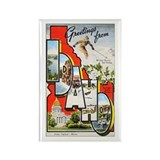 Idaho Greetings Rectangle Magnet (10 pack)